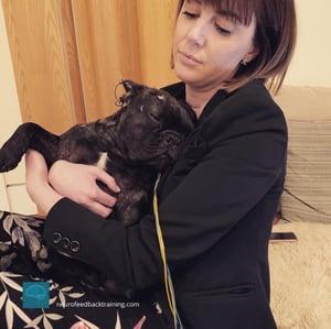 neurofeedbacktraining-neuroptimal-dog-training-sensors-13-1