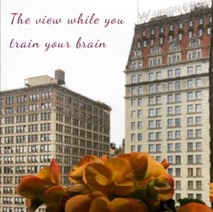 Neurofeedback NYC Training View