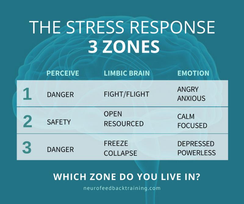 THE STRESS RESPONSE - 3 zones fight flight